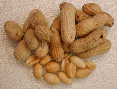 Ipeanuts