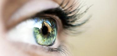 Eye2385_320372a
